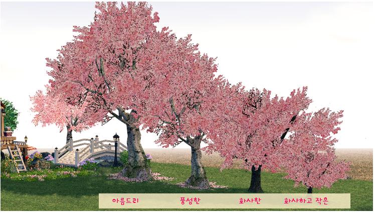 보상 나무 이미지